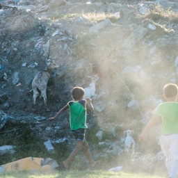 20151230-IMG_3200-kids-and-goats-manila