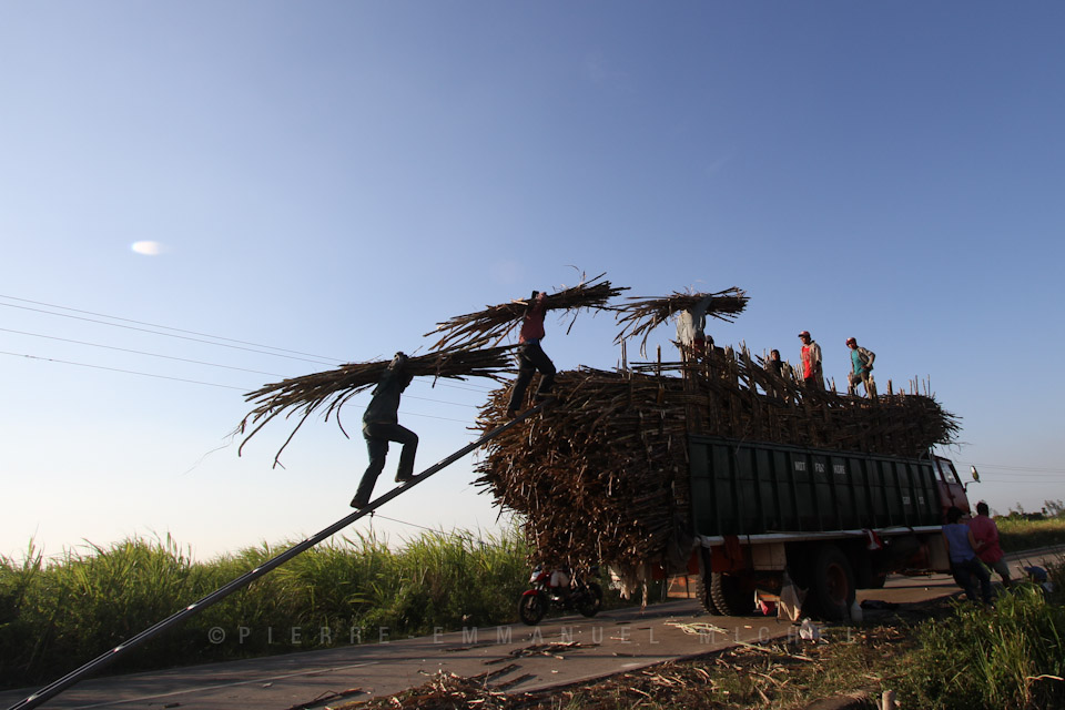 20130227-IMG_7502-sugar-cane-workers-harvest-sacada-pacquiaos