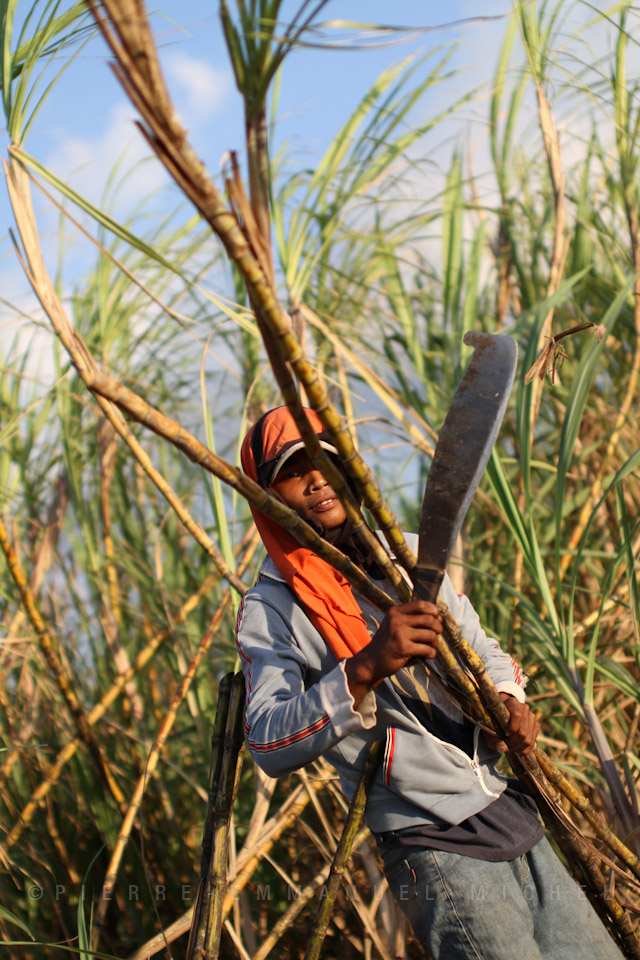 20130227-IMG_7597-sugar-cane-workers-harvest-sacada-pacquiaos